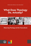 What Does Theology Do  Actually