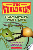 Green Ants vs  Army Ants
