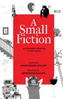 A Small Fiction Pdf/ePub eBook
