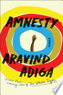 link to Amnesty : a novel in the TCC library catalog