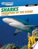 Sharks  Predators of the Ocean
