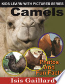 Camels  Photos and Fun Facts for Kids