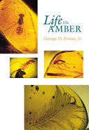 Life in Amber ebook