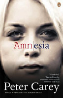 Cover of Amnesia