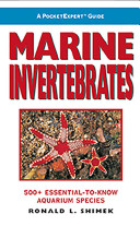 A PocketExpert Guide: Marine Invertebrates : 500+ Essential-to-Know ...