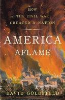 America Aflame Pdf/ePub eBook