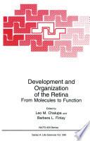 Development and Organization of the Retina