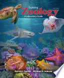 Exploring Zoology  A Laboratory Guide  Third Edition