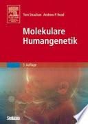 Molekulare Humangenetik