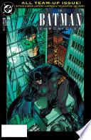 The Batman Chronicles  15 Book