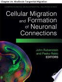 Comprehensive Developmental Neuroscience: Cellular Migration and Formation of Neuronal Connections