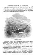 Seite 39