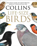 Collins Life-Sized Birds