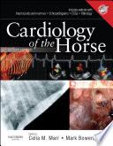 Cardiology Of The Horse E Book Book PDF