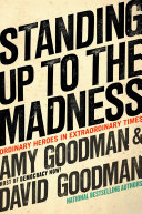 Standing Up to the Madness ebook