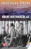 Breve historia de la Revolución mexicana, I  : Los antecedentes de la etapa maderista