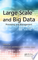 Large Scale and Big Data