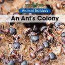 An Ant's Colony ebook