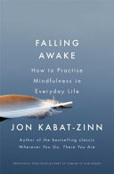 Falling Awake by Jon Kabat-Zinn