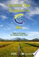 Charting New Pathways to C4 Rice