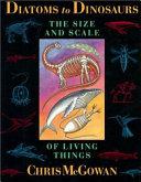 Diatoms to Dinosaurs