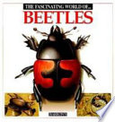 The Fascinating World of Beetles