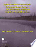 Hydrothermal Processes Above the Yellowstone Magma Chamber Book