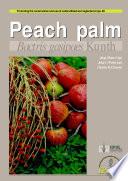 Peach Palm  Bactris Gasipaes Kunth