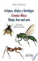 Avispas, abejas y hormigas