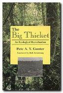 The Big Thicket Pdf/ePub eBook