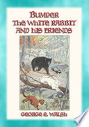 Bumper The White Rabbit And Friends 16 Illustrated Stories Of Bumper And His Friends