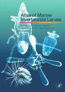 Atlas of Marine Invertebrate Larvae Book