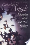 Gatherings Of Angels Book PDF