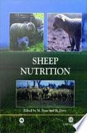 Sheep Nutrition