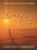 Pdf Bridging the Gap Telecharger