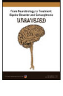 From Neurobiology to Treatment Book