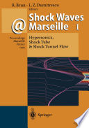 Shock Waves   Marseille I