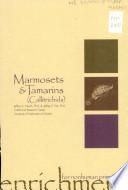 Enrichment for Nonhuman Primates  Marmosets   tamarins  callitrichids