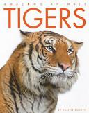 Amazing Animals Tigers