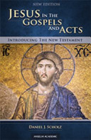 Jesus in the Gospels and Acts Book PDF