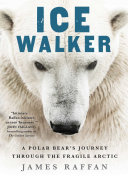 Ice Walker Pdf/ePub eBook