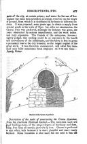 Страница 477