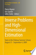 Inverse Problems and High Dimensional Estimation