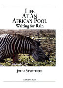 Life At An African Pool