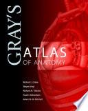Gray s Atlas of Anatomy Book