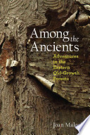 Among the Ancients  : Adventures in the Eastern Old-Growth Forests