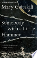 Somebody with a Little Hammer Book PDF