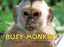 Busy Monkeys
