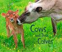 Cows and Their Calves PDF