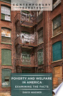Poverty and Welfare in America  Examining the Facts